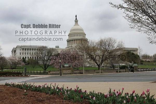 Photograph - Capital 8656 by Captain Debbie Ritter