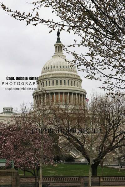 Photograph - Capital 8664 by Captain Debbie Ritter