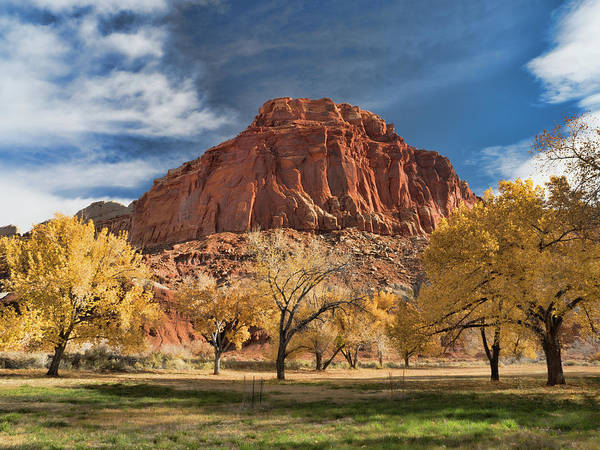 Photograph - Capital Reef Autumn by Martin Gollery