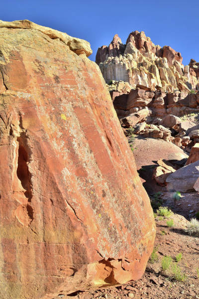 Photograph - Capitol Gorge Boulder by Ray Mathis