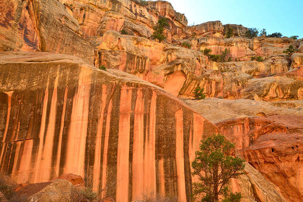 Photograph - Capitol Gorge Desert Varnish by Ray Mathis