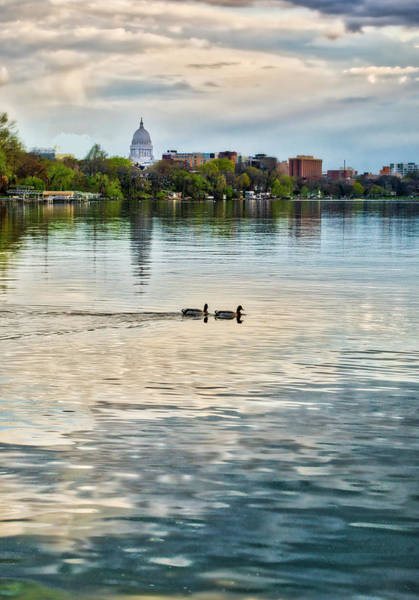 Photograph - Capitol -madison-wisconsin From Tenney Park by Steven Ralser