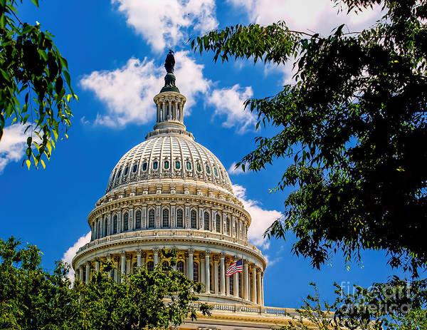Photograph - Capitol Of The United States by Nick Zelinsky