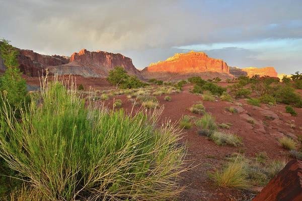 Photograph - Capitol Reef Aglow At Sunset by Ray Mathis