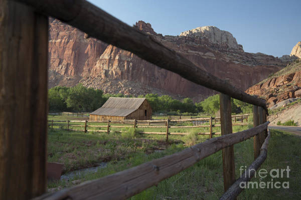 Photograph - Capitol Reef National Park by Jim West