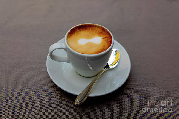Photograph - Cappuccino Coffee by Mats Silvan