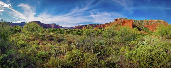 Photograph - Caprock Canyon Panorama by Adam Reinhart