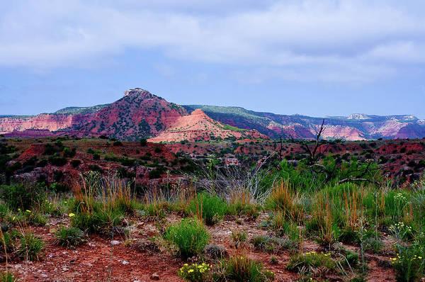 Photograph - Caprock Landscape by Adam Reinhart