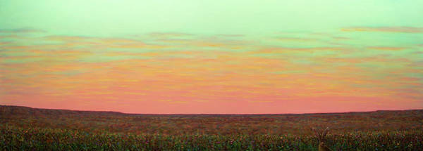 Painting - Caprock Sunrise With Bunny Holly by James W Johnson
