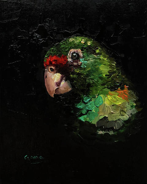 Painting - Captain The Parrot by Janet Garcia