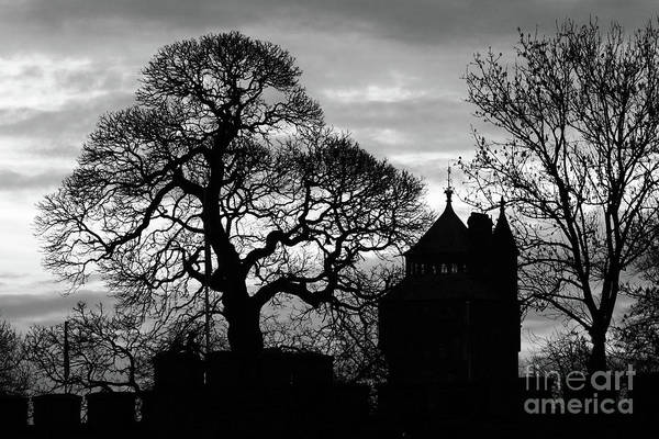 Photograph - Cardiff Castle Winter Silhouettes by James Brunker