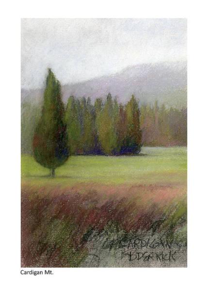 Pastel - Cardigan Mt. Study by Betsy Derrick