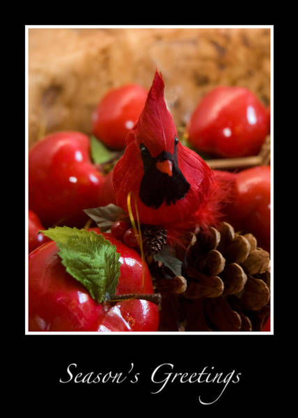 Photograph - Cardinal And Apples Season Greetings Card by Ginger Wakem