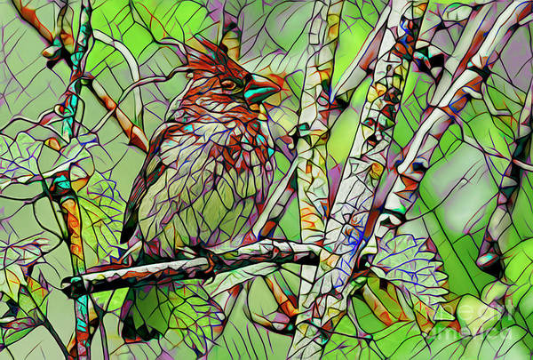 Wall Art - Painting - Cardinal Mosaic by Deborah Benoit