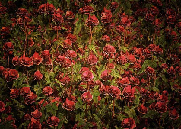 Painting - Cardinal Richelieu Roses by Jan Keteleer