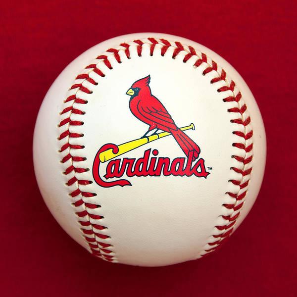Photograph - Cardinals by Steve Stuller
