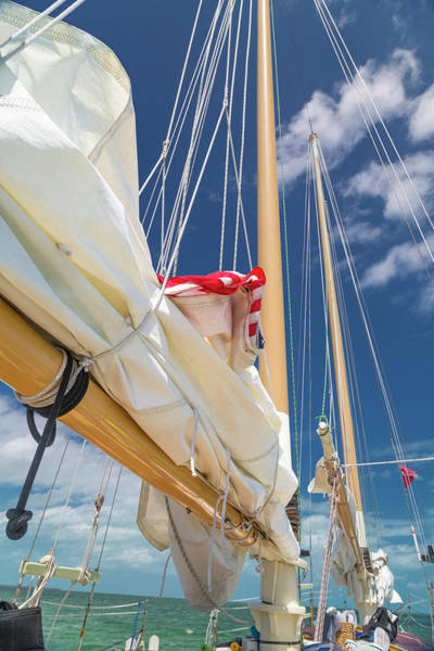 Wall Art - Photograph - Caribbean Getaway Sailboat by Betsy Knapp