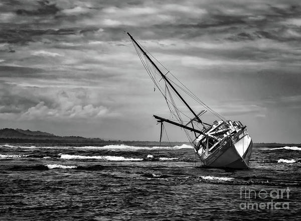 Cahuita Photograph - Caribbean Shipwreck In Cocoa by Norma Brandsberg