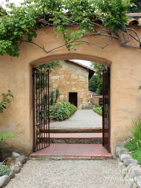 Carmel Mission Photograph - Carmel Mission Path by Carol Groenen