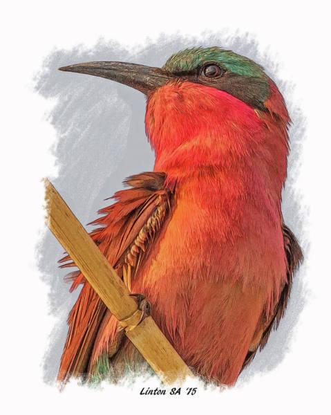 Digital Art - African Carmine Bee-eater by Larry Linton