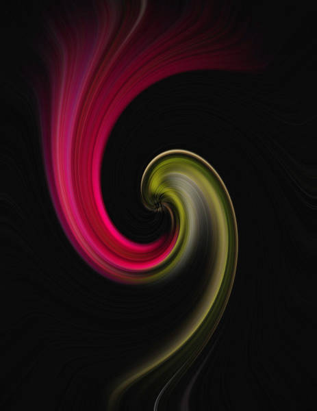 Carnation Twirl Art Print