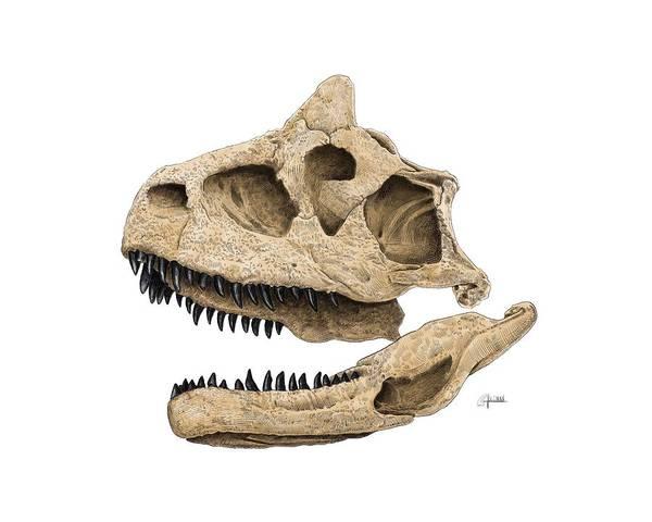 Carnotaurus Skull Art Print