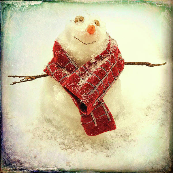 Photograph - Carolina Snowman by Patricia Schaefer
