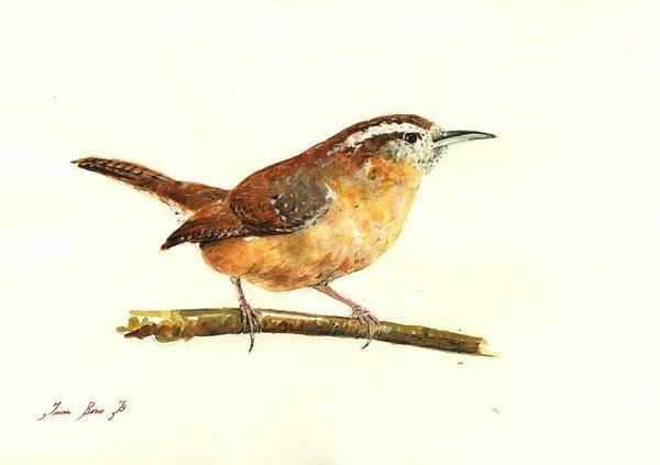 Bird Watercolor Painting - Carolina Wren Watercolor Painting by Juan  Bosco