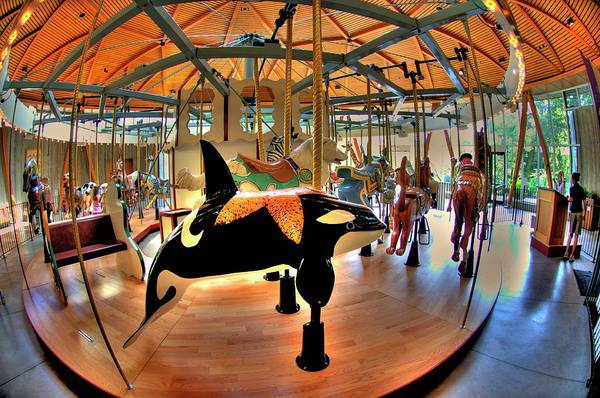 Photograph - Carousel 2 At The Butchart Gardens by Lawrence Christopher