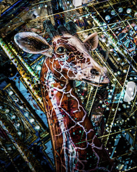 Photograph - Carousel Giraffe  by Michael Arend