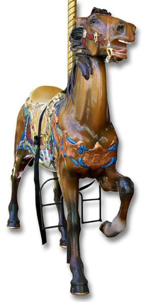 Photograph - Carousel Horse by Bob Slitzan