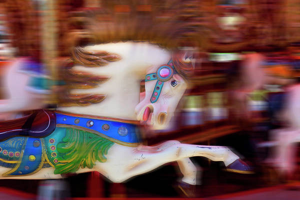 Merry Go Round Photograph - Carousel Horse In Motion by Garry Gay