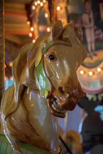 Wall Art - Photograph - Carousel Horse  by Linda Eszenyi