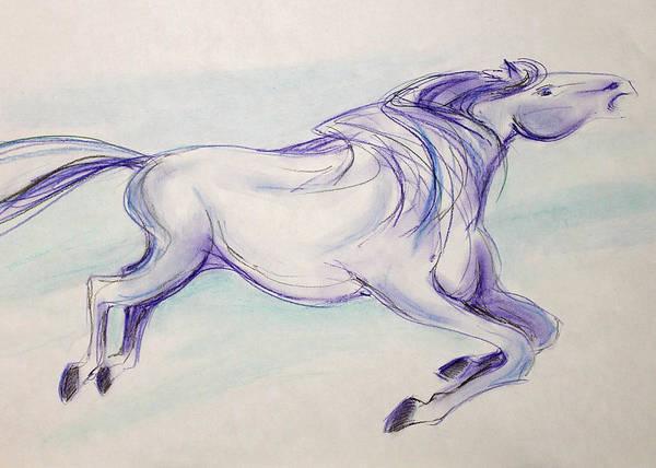 Warmbloods Drawing - Carousel by Jennifer Fosgate