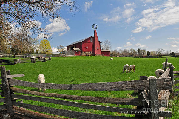 D14d-43 Carriage Hill Farm Metro Park Photo Art Print