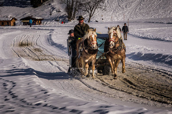 Photograph - Carriage Ride In Winter by Wolfgang Stocker