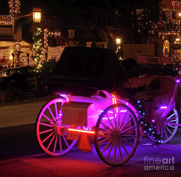 Flagler Photograph - Carriage Ride Night Of Lights by D Hackett