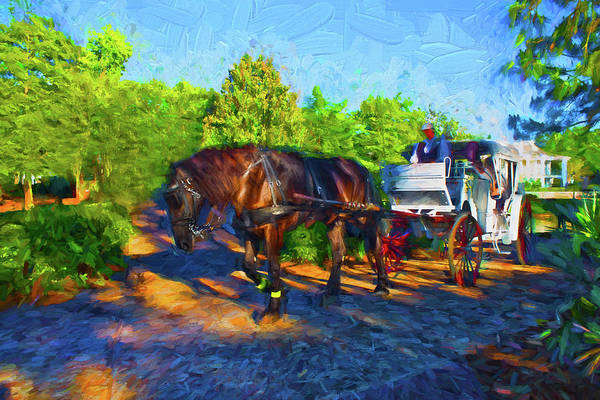 Photograph - Carriage Ride Series 16 by Carlos Diaz