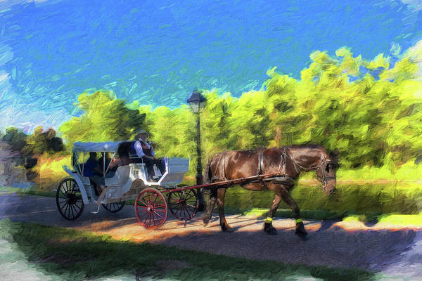 Photograph - Carriage Rides Series 17 by Carlos Diaz
