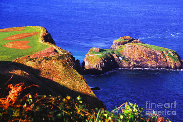Photograph - Carrick-a-rede by Thomas R Fletcher
