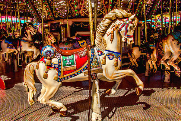 Photograph - Carrousel Horse Ride by Garry Gay