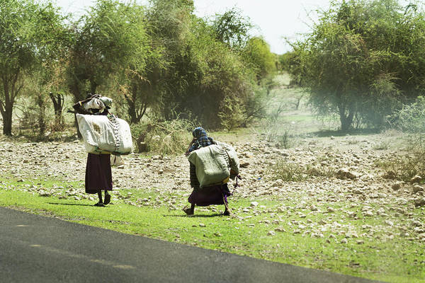 Photograph - Carrying Bales by RicardMN Photography