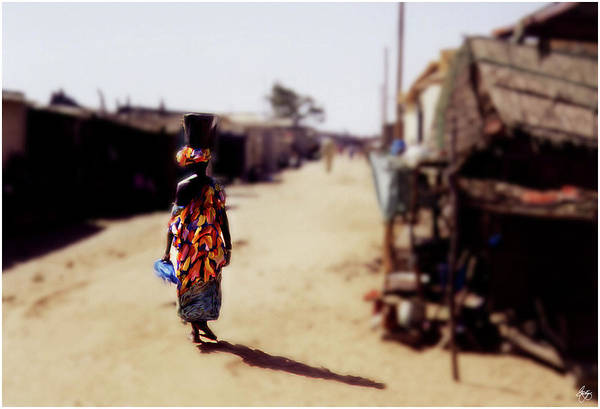 Photograph - Carrying Fish On The Streets Of Kayar Senegal by Wayne King