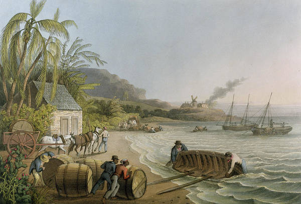 West Bay Painting - Carting And Putting Sugar Hogsheads On Board by William Clark