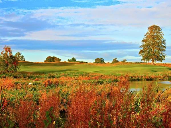 Maynooth Photograph - Carton House Golf Club - Montgomerie Course - Hole #18 by Scott Carda