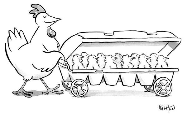 Chicken Drawing - Carton Of Chicks by Robert Leighton