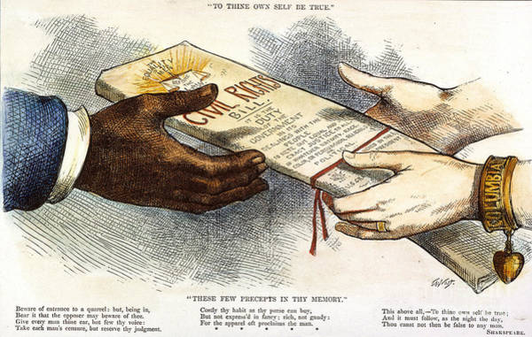 Photograph - Cartoon: Civil Rights 1875 by Granger