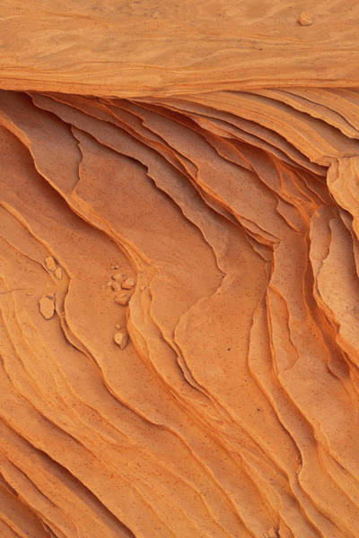 Photograph - Carved By Wind by Dustin LeFevre