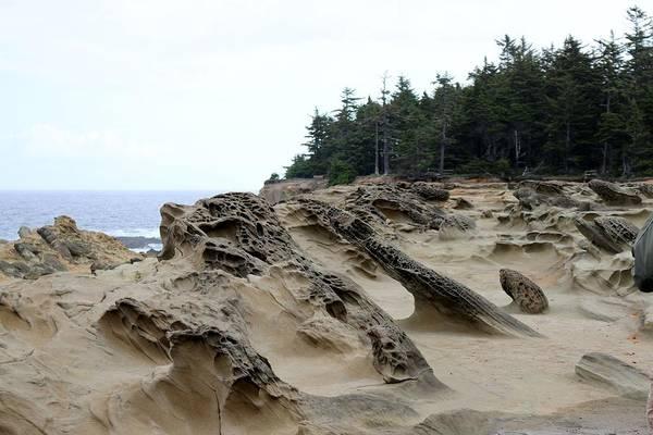 Photograph - Carved Sandstone Along The Oregon Coast  by Christy Pooschke