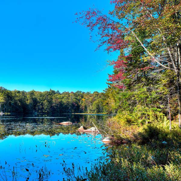 Photograph - Cary Lake - September 2015 by David Patterson
